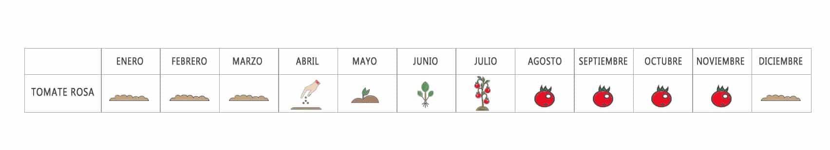 Calendario Basia